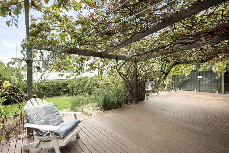 vine trellis over decking