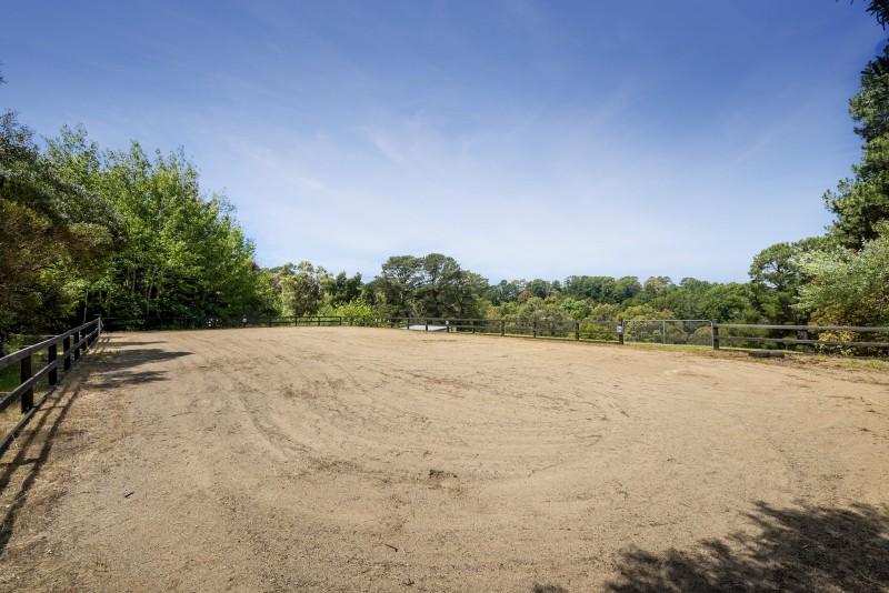 horse area